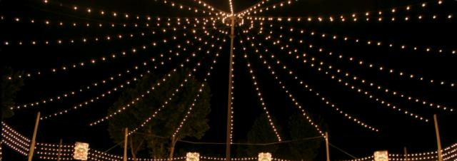 Where to find LIGHTS, STRING DRAPED 7 WATT PER FOOT in Colonial Heights